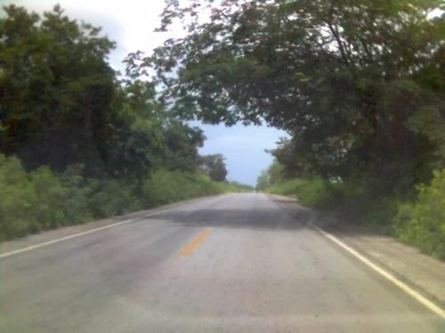 Дороги в ети южные штаты-как правило-всегда хорошие и бесплатные-тольщо магистраль Мерида-Канкун платная.