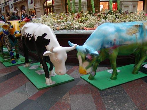 Корова Артистическая и Корова Счастья