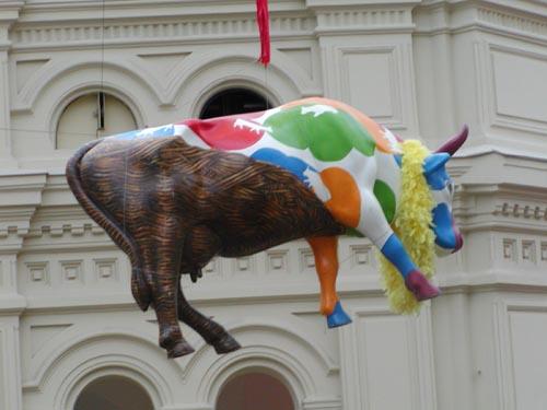 Корова Деревенская (Пастушка стада)