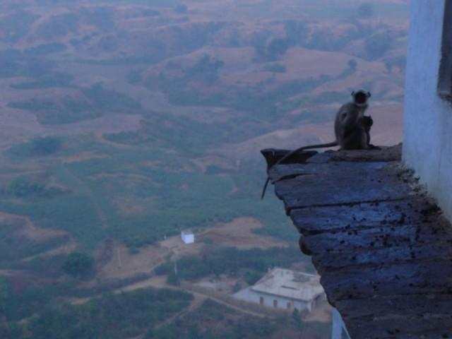 вид с Хануман Дхара