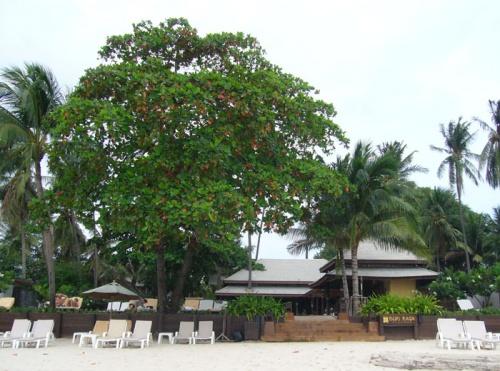 Отель Buri Rasa