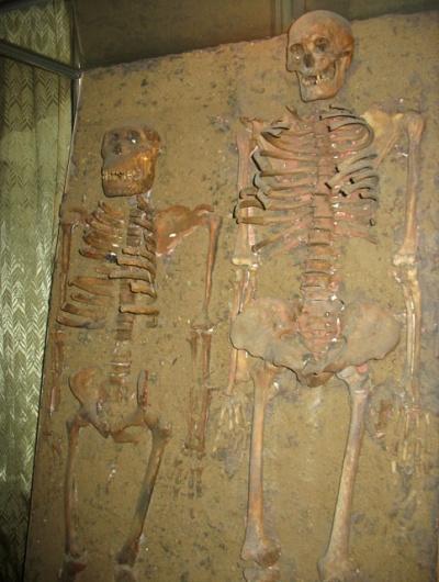 """""""Робинзон и Пятница"""". Фото, опровергающее дарвиновскую теорию эволюции"""