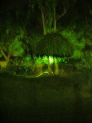 Психоделика на территории делийского отеля