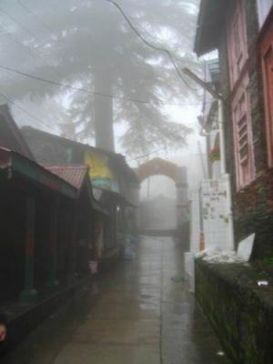 Маклеод в тумане