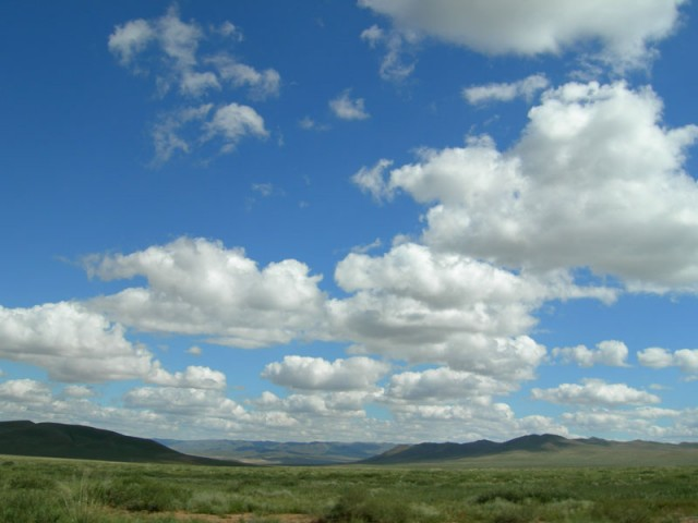 Монголия: Степь
