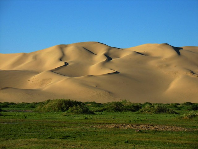 Монголия: Хонгорские Дюны