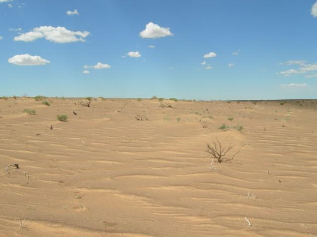 ... а впереди - бесконечные пески