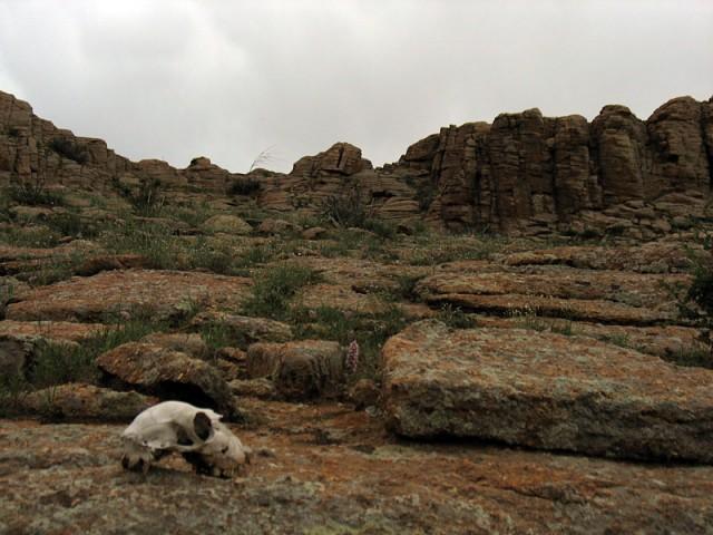 Монголия. Священные скалы Бага Газрын Чулуу