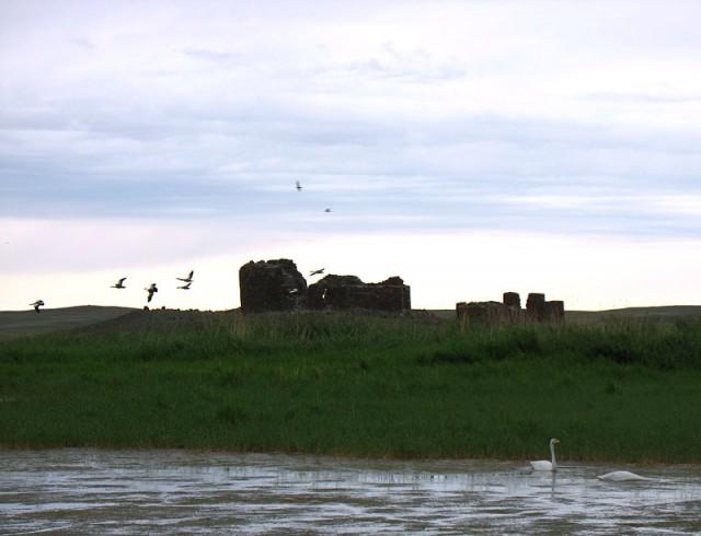 Монголия. Руины буддистского храма Х века и дикие лебеди