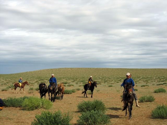 Монголия. Всадники