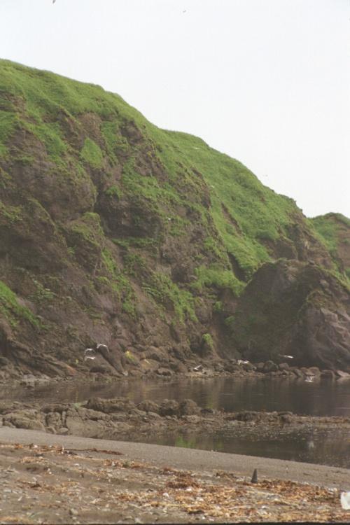 Шикотан бухты по дороге к маяку