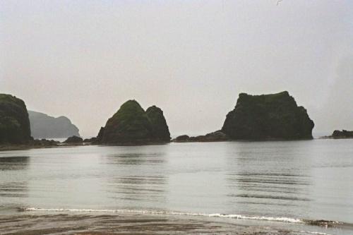 Шикотан бухты