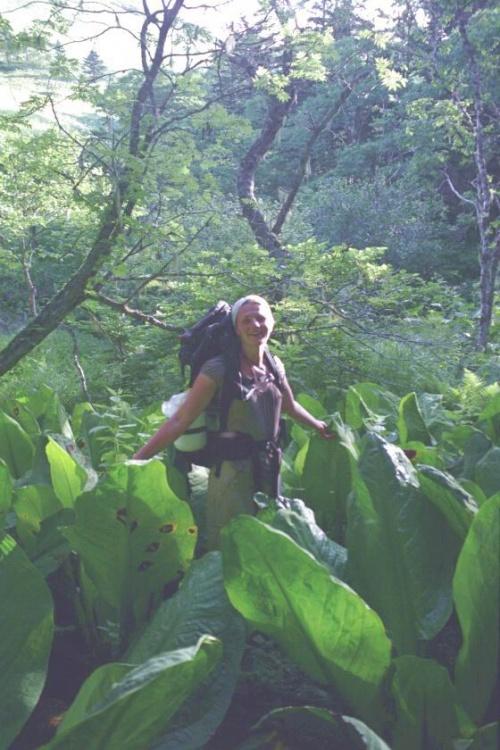 тропики болотные....удивительные заросли растений похожих по строению на цветную капусту без кочана