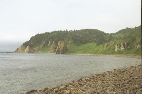Вид на охотское побережье после выхода с экологической тропы