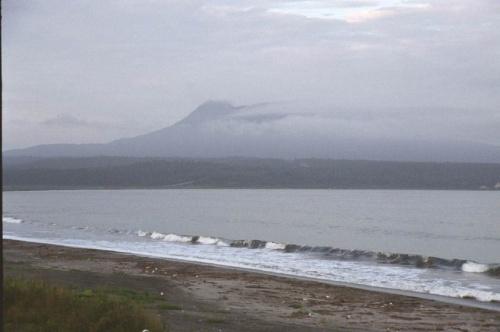 туманный берег океана