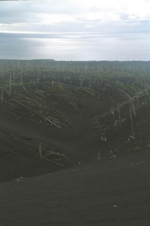 распадок,он проходит до самого низа,переходя в ручей,в вершине этого распадка и находится тропа на вулкан...но мы ее вовремя не нашли