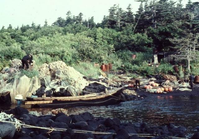 Рыбаки в заливе Доброе начало.