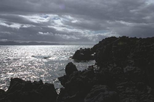 Серебренное ожерелье и черный бархат...на горизонте камень Лев