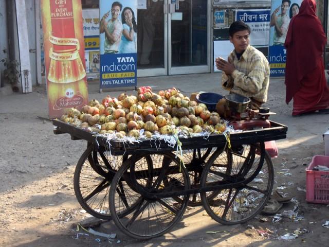 Индийский кентавр или человек-тележка. По дороге из Дели в Матхуру