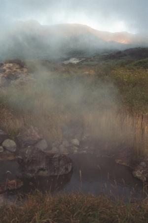 кипящее болото