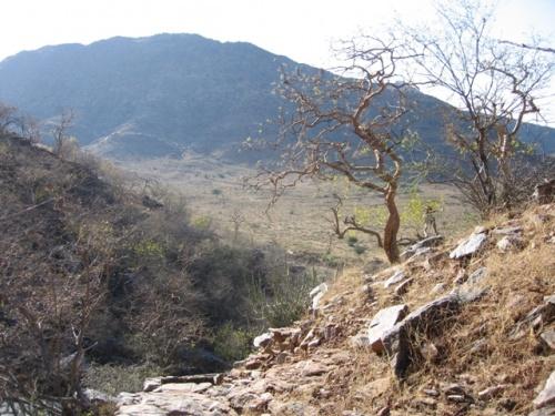горы Аравали