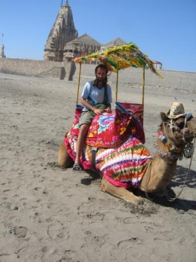 верблюд и я