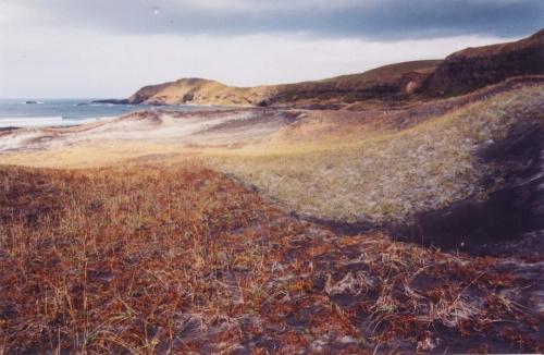 сопки или дюны