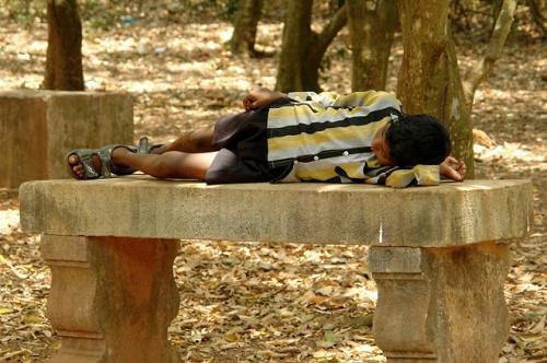 Мальчик устал и прилег отдохнуть на скамейке в зоопарке