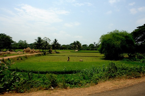 Дорога из Бхубанешвара в Конарк