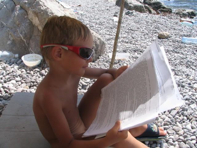 дружественный читатель
