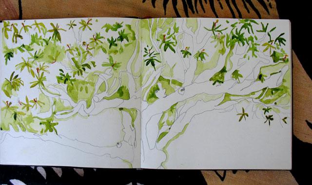 Дерево. Рисунок Селин