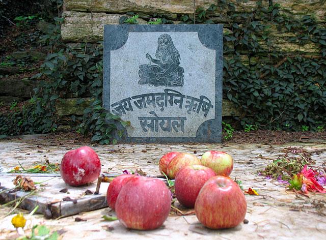 Яблоки у святилища Джамадагни с деревне Сойл