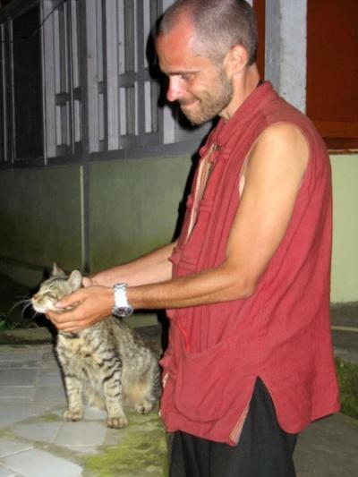 Кошачьи страсти в Наггаре