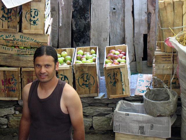 Йогу, наш сосед, один из участников яблочного бизнеса Химачала