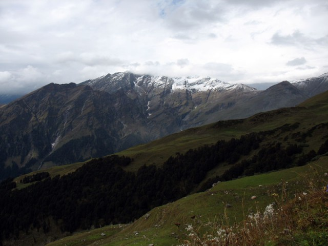 Альпийские луга в Гималаях