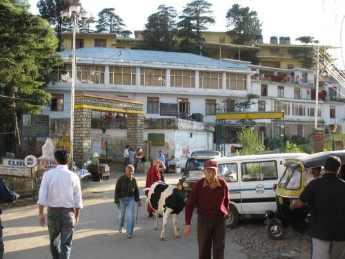 Резиденция Далаи-ламы