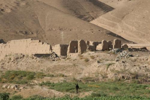 Развалины встречаются довольно часто