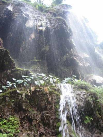 водопады Ришикеша