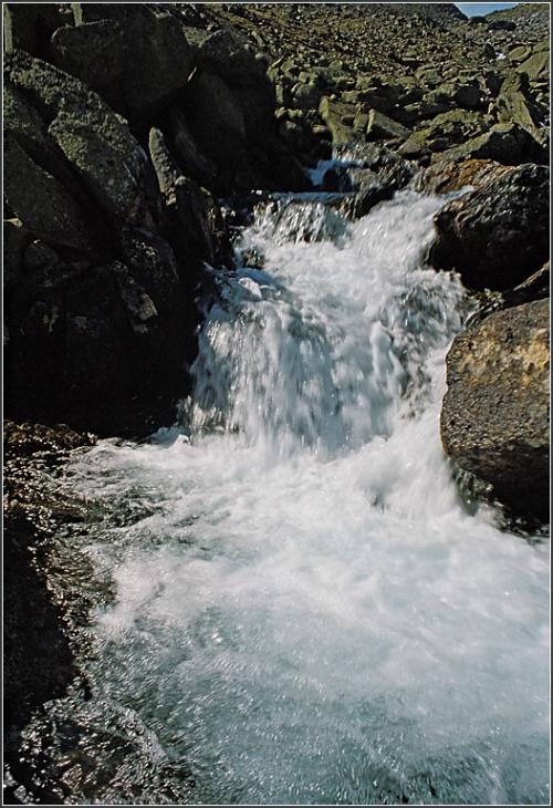 дегустация чистейшей воды