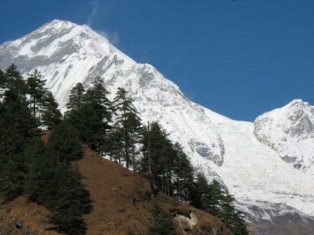 Дхаулагири