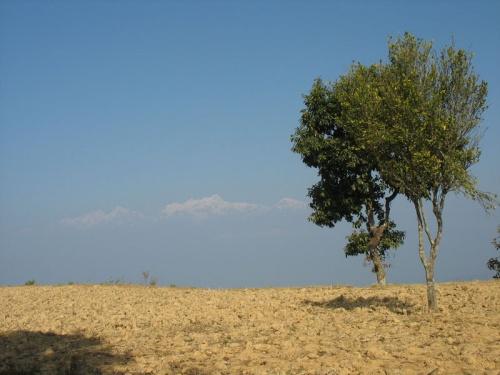 Вид на Гималаи из Бандипура