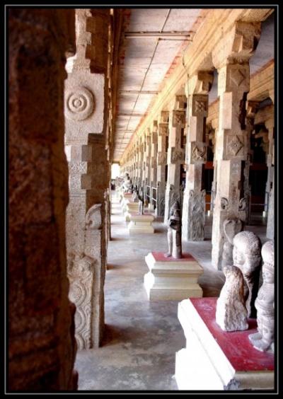 Тысячи колонн в храмовом музее