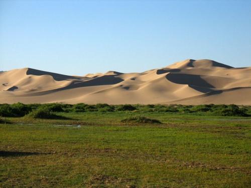 Утро в дюнах Хонгор Элс, пустыня Гоби