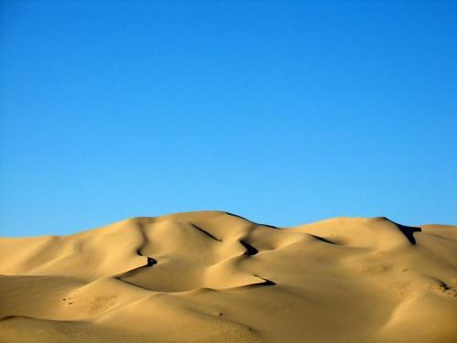 Пески Хонгорын Элс, пустыня Гоби