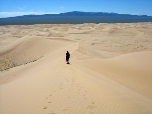 Муни в дюнах. Пески Хонгорын Элс