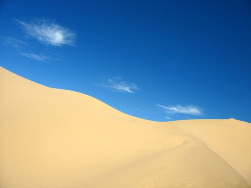 В дюнах Хонгор Элс, пустыня Гоби
