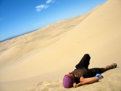 Муни нагулялся по дюнам еще вчера, поэтому сейчас он дрыхнет