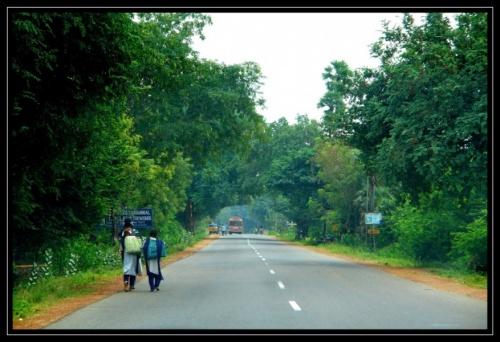 Дорога в Рамешварам