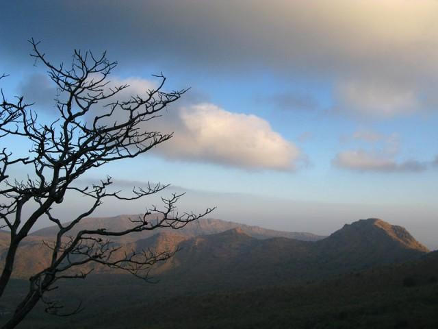 Утро в окрестностях горы Гирнар