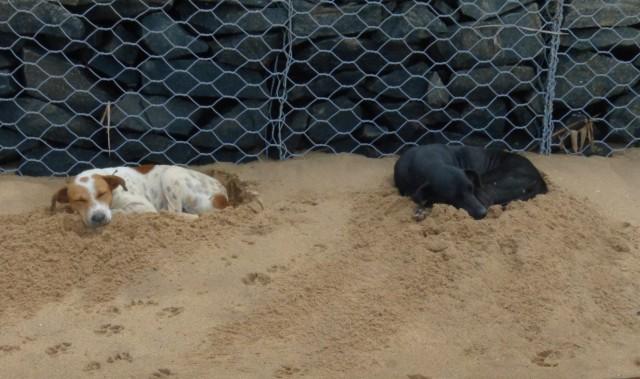 поспать на песочке